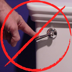 Toilet lever what not to flush